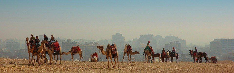 Египет из Самары 2 августа